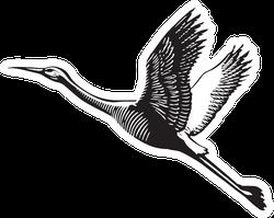 Scratch Board Illustration Of Flying Crane Sticker