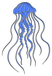 Sea Jellyfish Isolated On White Sticker