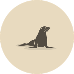 Sea Lion Illustration In Beige Sticker