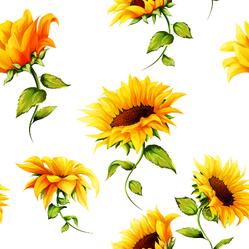 Seamless Pattern Of Sunflowers Sticker