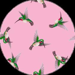 Seamless Pattern With Hummingbirds Trendy Pink Sticker