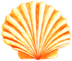Seashell Watercolor Illustration In Yellow Sticker
