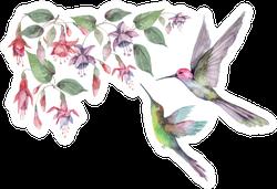 Set Of Hummingbird Birds In Flight Pink Fuchsia Flowers Sticker