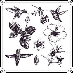 Set Of Ink-pen Hand-drawn Illustration Hummingbirds Sticker