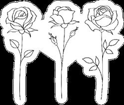 Set Of Sketches, Hand Drawn Rose Sticker