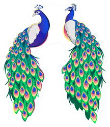 Set Of Two Peacocks Isolated Facing Each Other Sticker