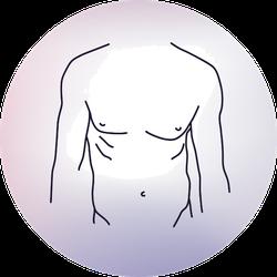 Sexy Man Body Line Illustration Sticker