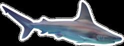 Shark Diving Sticker