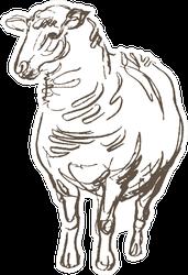 Sheep Hand Drawn Sketch Brown Sticker