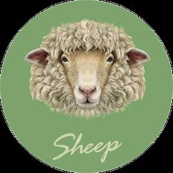 Sheep Portrait On Green Background Sticker