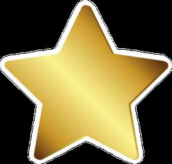 Shiny Gold Star Sticker