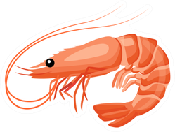 Shrimp Icon In Flat Style Sticker