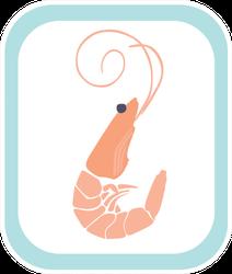 Shrimp Illustration With Blue Frame Sticker
