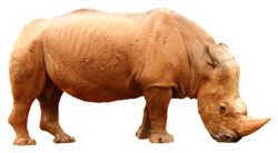 Side View Of A Rhino On A White Background Sticker