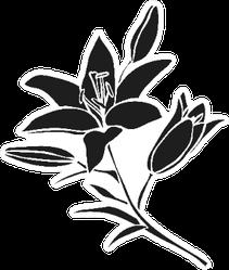 Silhouette Lily Black Outline Flower Sticker