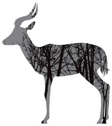 Silhouette Of Antelope With Trees On Background Sticker