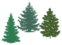 Silhouettes Of Spruce And Pine Trees Sticker