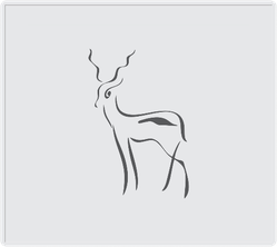 Simple Antelope Drawing On Grey Square Sticker