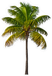 Single Palm Blowing In The Wind Sticker
