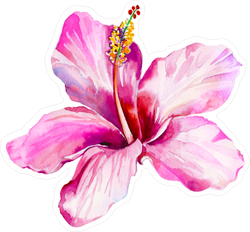 Single Pink Beautiful Hibiscus Sticker