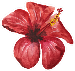 Single Watercolor Red Hibiscus Sticker