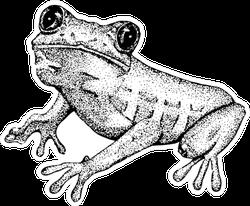 Sketch Of Doodle Frog Sticker