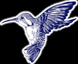 Sketch Of Hummingbird Engraved Blue Sticker