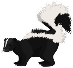 Skunk Cartoon Sticker