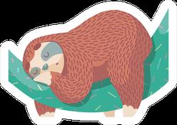 Sleeping Cartoon Sloth Sticker