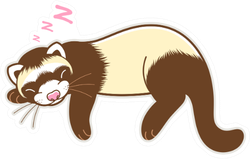 Sleeping Ferret Pink Z's Sticker