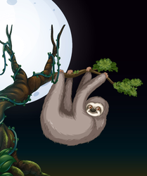 Sloth on Tree Branch at Night Sticker