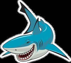 Sly Looking Shark Sticker