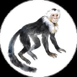 Smiling Capuchin Monkey Sticker
