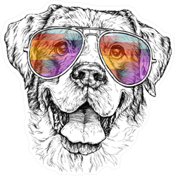 Smiling Dog in Colorful Sunglasses Sticker