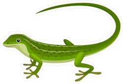 Smooth Lizard Sticker