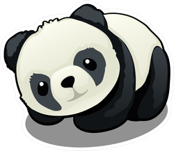 Snuggly Panda Bear Looking Up Sticker