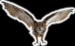 Soaring Owl In Flight Sticker