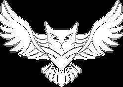 Soaring Owl Logo Sticker