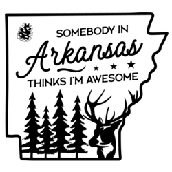 Somebody In Arkansas Thinks I'm Awesome Sticker