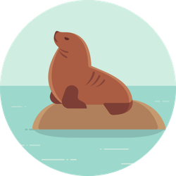 South American (patagonian) Sea Lion On Rock In Ocean Sticker