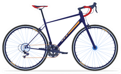 Sport Bike Active Way Of Life Sticker