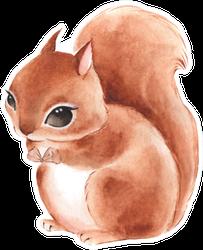 Squirrel Cute Watercolor Illustration Sticker