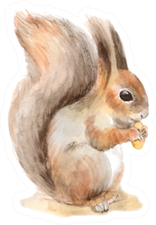 Squirrel With A Nut Watercolor Painting Sticker