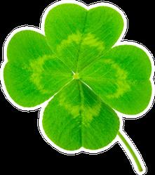 St. Patrick's Day Symbol Lucky Shamrock Clover Sticker