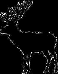 Standing Deer Silhouette Sticker