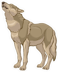 Standing Howling Grey Wolf With Raised Head Sticker