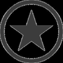 Classic Star in Circle Sticker