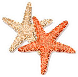 starfish Friends Isolated On White Sticker