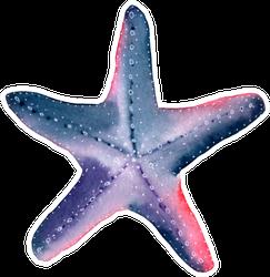 Starfish Watercolor Painting Pink & Purple Sticker