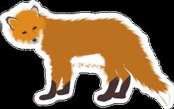 Staring Fox Sticker
